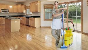 White Fox. Качественная уборка вашего дома!